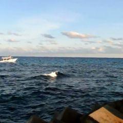 Playa Langosta User Photo