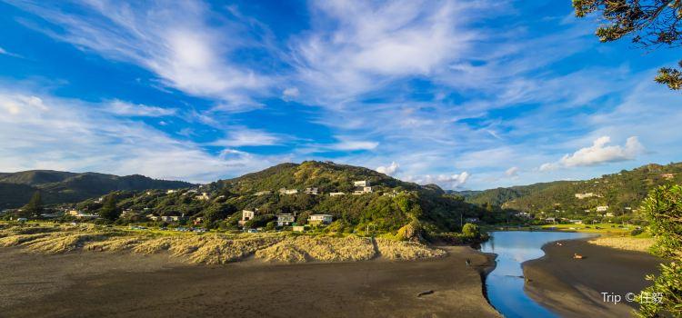 Piha Beach3
