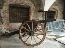 卢布尔雅那城堡-卢布尔雅那-blakeni