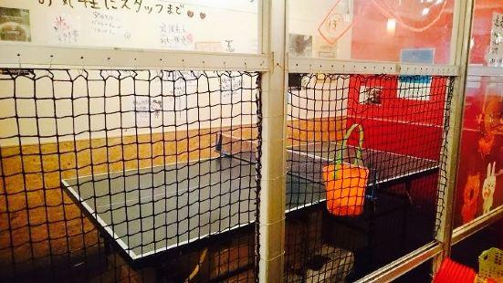 Ping Pong Bar Bonzo Shibuya No. 2