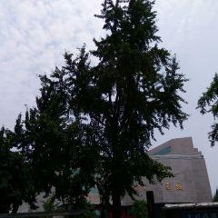 시안 종루 여행 사진