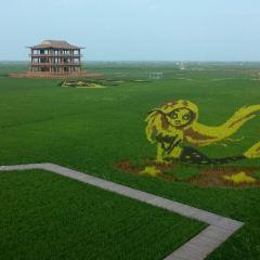 紅海灘國家風景廊道用戶圖片