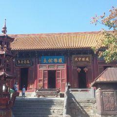 中嶽廟用戶圖片