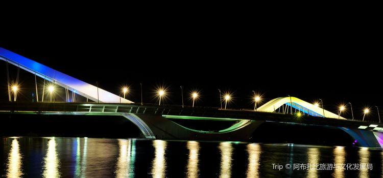 Sheikh Zayed Bridge1