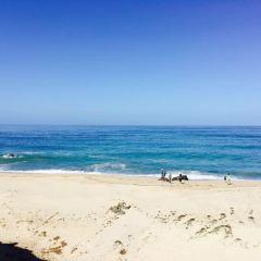 Carpinteria City Beach User Photo