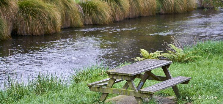 Avon River2