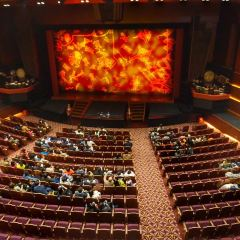 Walt Disney Grand Theatre User Photo