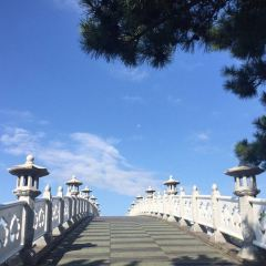 Seonimgyo Bridge User Photo