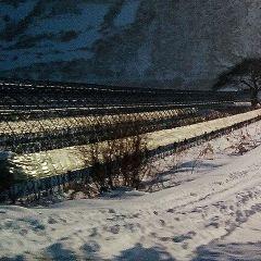 鶴崗國家礦山公園用戶圖片