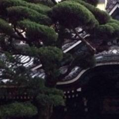 Rokkakudo User Photo