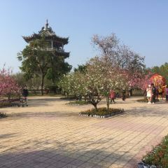 Fenghuangzhou Park (Northwest Gate) User Photo