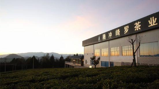 綺羅茶業清水莊園