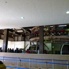 箱根空中纜車用戶圖片