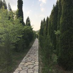 雲門山風景區用戶圖片