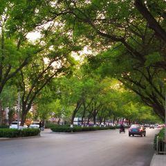 Jingxiu Park User Photo