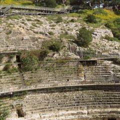 卡利亞裡羅馬圓形劇場用戶圖片