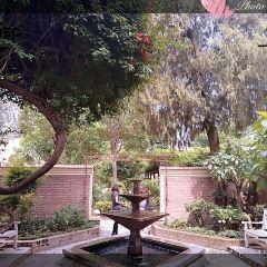 夢想花園用戶圖片