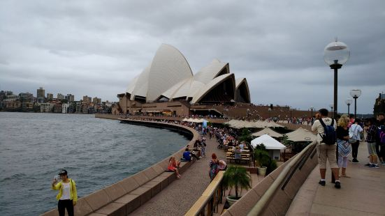 Sea Sydney Harbour
