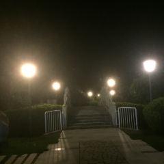 陳政墓用戶圖片