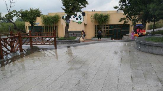 秦嶺野生動物園蟲蟲樂園