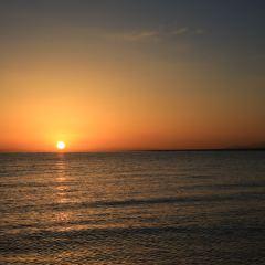 黑馬河看日出用戶圖片