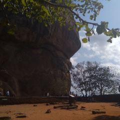 獅子岩用戶圖片