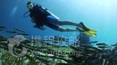 瓦度岛潜水