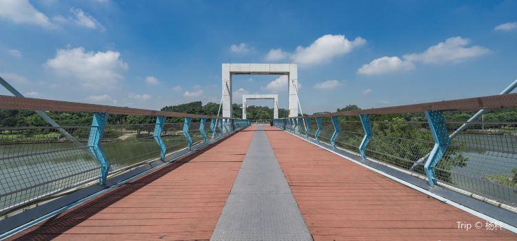 Dongguan Botanical Garden3