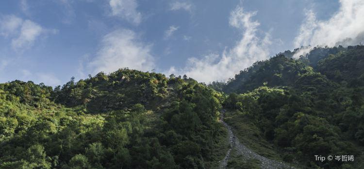 와룡 판다 자연 보호구2