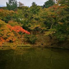Entoku-in User Photo