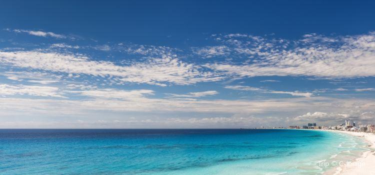 Playa Caracol1