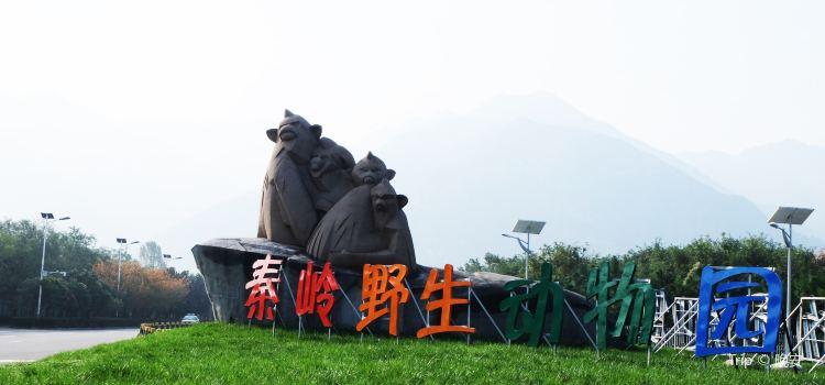 Qinling Wildlife Park2