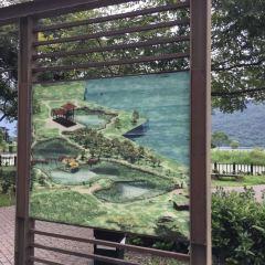 鯉魚潭用戶圖片