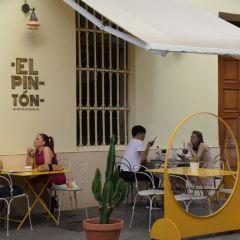 EL PINTON User Photo