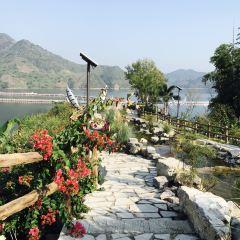 紅水河用戶圖片