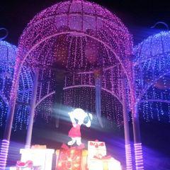 Fantasia Carousel User Photo