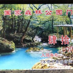 大口國家森林公園用戶圖片