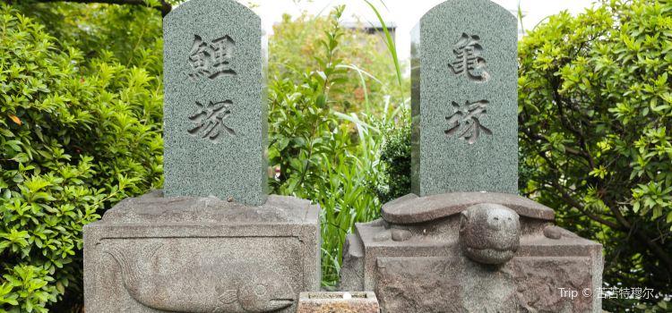 Shinsenen2