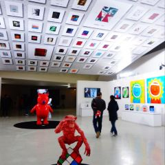 Enjoy Museum of Art User Photo