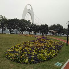 Linjiang Linear Park User Photo