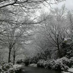 Century Park User Photo