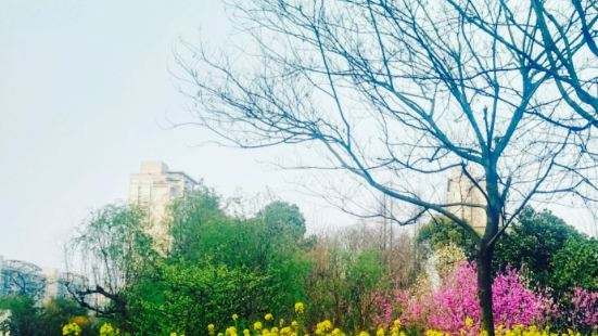 Douxiang Park