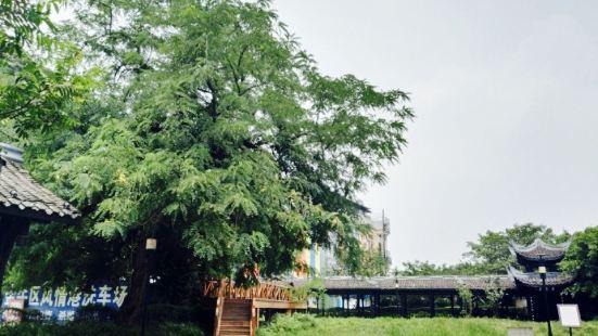 Jiulidi Park (South Gate)