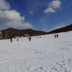 扎蘭屯金龍山滑雪場用戶圖片