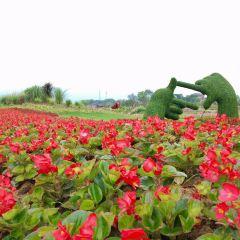 Huan Xi Village User Photo