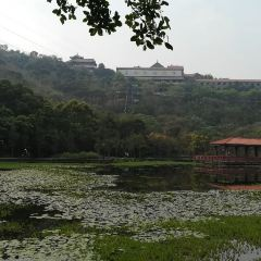 Shunfeng Mountain Park User Photo