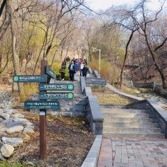 남산공원 여행 사진