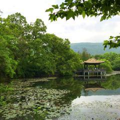 Liu Hui Pavilion User Photo