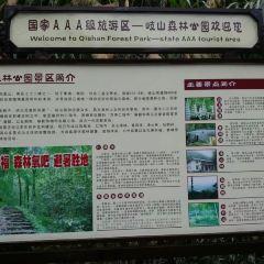 岐山景區用戶圖片