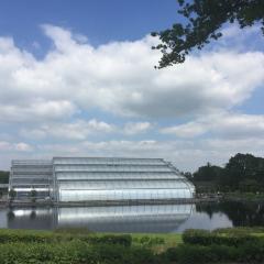Jubilee Gardens User Photo